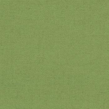 Verdunkelnd Grün 17-008