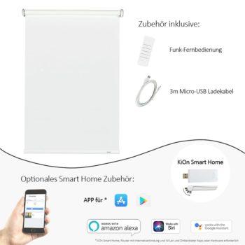 Amazon modern optinal smart home.jpg