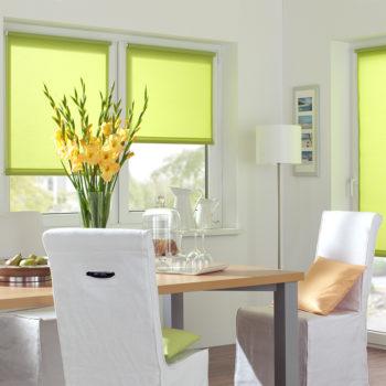 Sonnenschutz Elektrorollo Easyfix Uni gruen apfel Zimmer 1